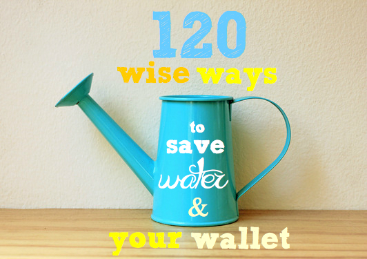 Water | 120 wise ways to save water and your wallet