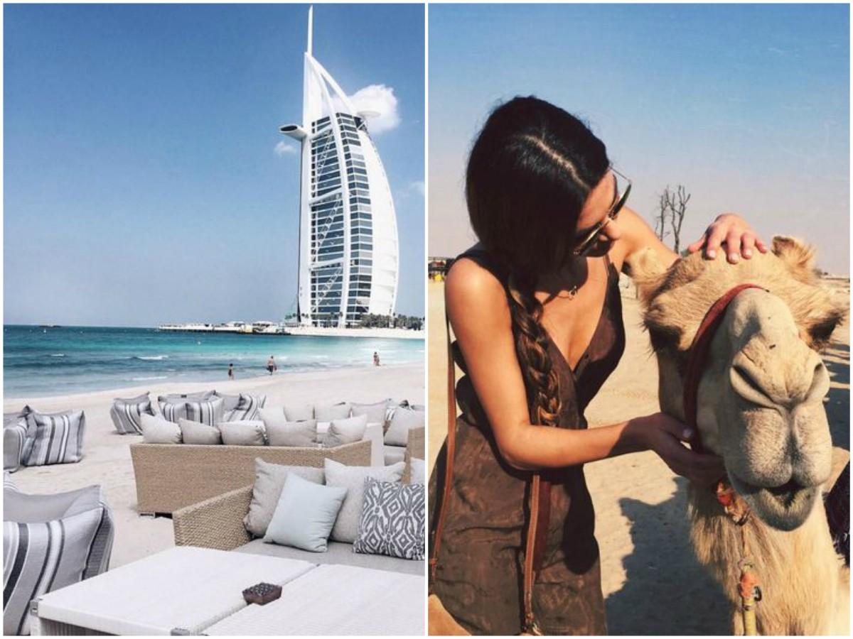 The New Middle East Collage.jpg How To Be the Queen Of Tropicana - 8f6135e6 0090 485c 8d94 6414ba75a620 image01 - How To Be the Queen Of Tropicana