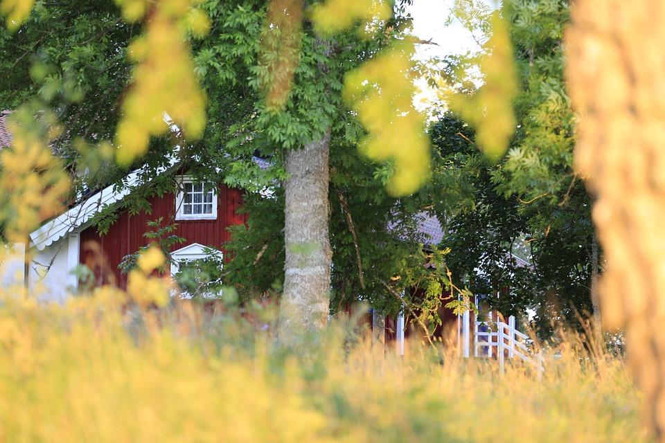 house-690836_960_720.jpg