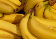 Australian finance blogger goes bananas