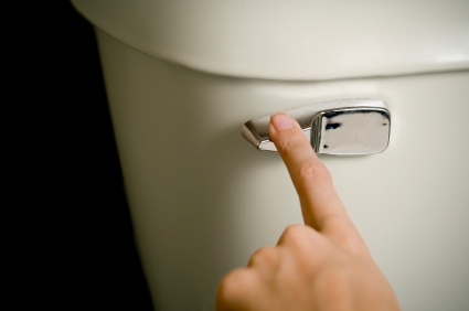 Take the plunge and save big - flush the toilet - Take the plunge and save big
