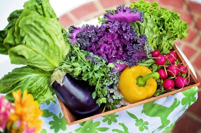 Magnificent summer gardens are born in winter - garden 1468540757 - Magnificent summer gardens are born in winter