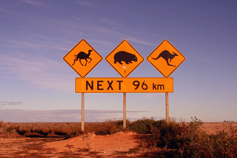 travel mishaps - nullarbor sign - 20 crazy travel mishaps and tips for avoiding them